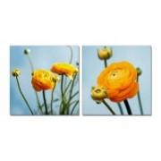 Модульные картины с розами