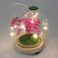 PP-00036 (48) Сухоцвет в стекле на деревянной подставке со светодиодами, D=13,5см, H=10,5см