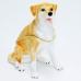 """BP-26752 (48) 6,4*4,3*8,4см. Шкатулка для ювелирных украшений """"Собака лабрадор"""""""